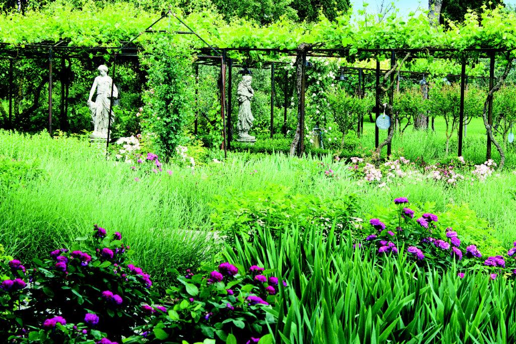 Con l 39 accademia del silenzio nell 39 orto giardino di - L orto in giardino ...