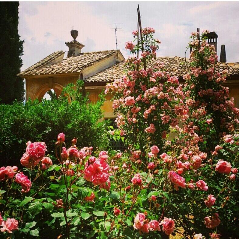 Grande successo per I giorni delle rose